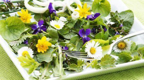 Лікування їстівними квітами