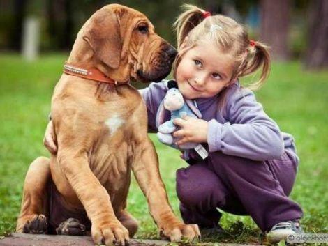 Власники собак можуть частіше хворіти