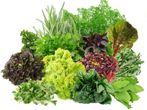 Три продукти, що омолоджують організм