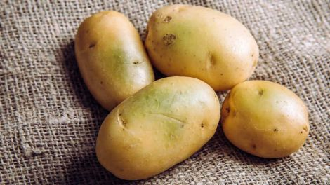 Названо найнебезпечнішу картоплю