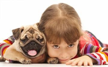 собака врятує дитину від астми