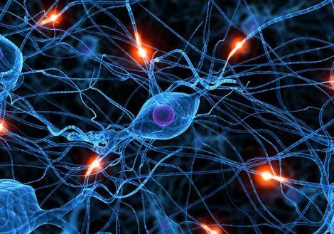 Механізм для відновлення нервових клітин
