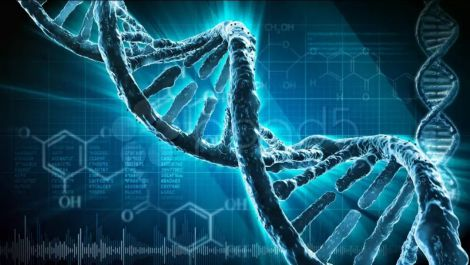 Корисна генетична мутація