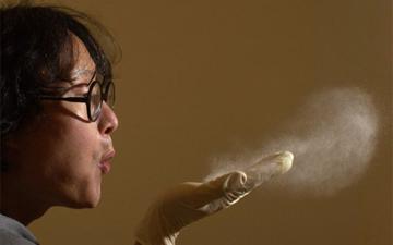 домашній пил є небезпечним для здоров'я