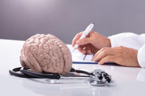 Названий головний продукт для мозку