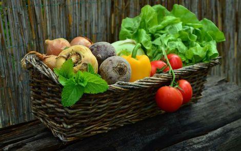 Їжа для профілактики раку
