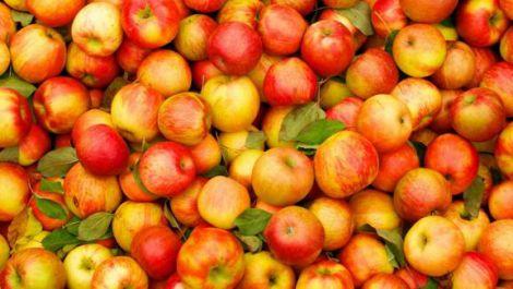Як обрати корисні яблука?