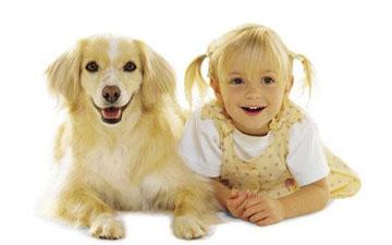 тісний контакт дитини з твариною дозволить розвинути тісні соціальні контакти в майбутньому
