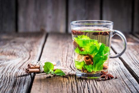 Зелений чай для покращення чоловічої потенції