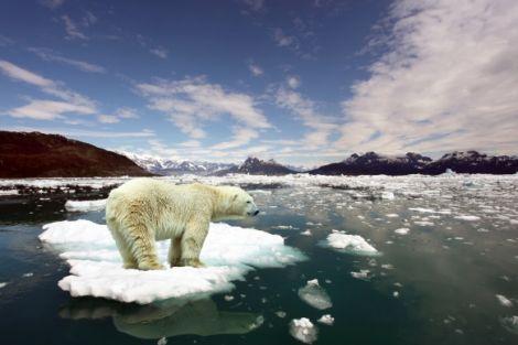 Глобальні зміни клімату