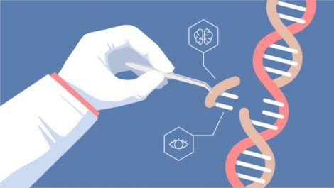 використання стовбурових клітин