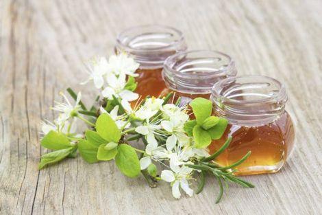 Які хвороби лікують різні види меду?