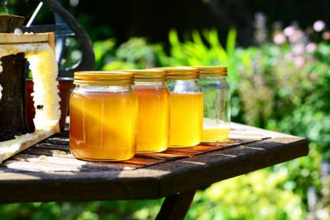 Користь меду для попередження інфаркту