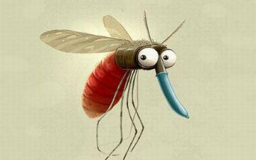 Сезон комарів. ТОП-10 міфів про комах » Перечин NEWS a0e735903a021