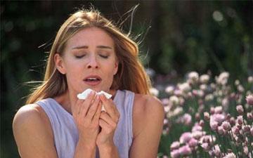 ці трави допоможуть при алергії