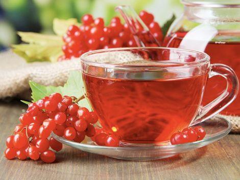 Застуду вилікує калина: рецепти