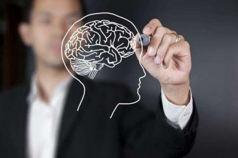 Кращі продукти і звички для поліпшення роботи мозку