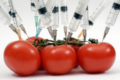 вживання ГМО продуктів може стати причиною суттєвого погіршення здоров'я