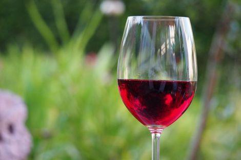 Вчені з'ясували, що червоне вино сприяє зниженню депресії і тривожності