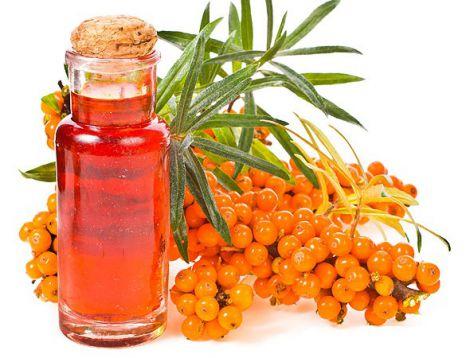Як вилікувати геморой обліпиховою олією?