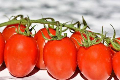 Як за кольором визначити корисність фруктів і овочів?