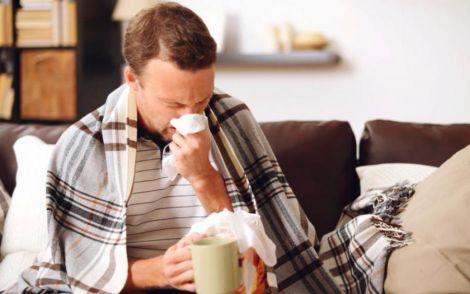 Чай з ехінацеї захистить від застуди