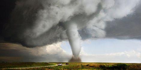 Шкода стихійних лиш для здоров'я