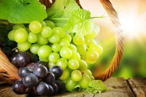 Виноград корисний
