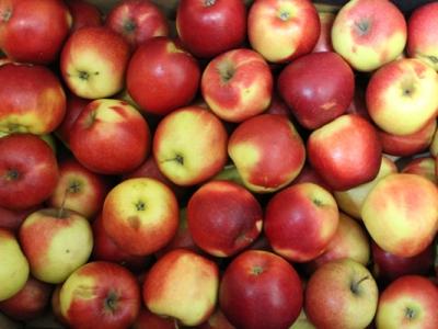 Коли яблука можуть зашкодити?