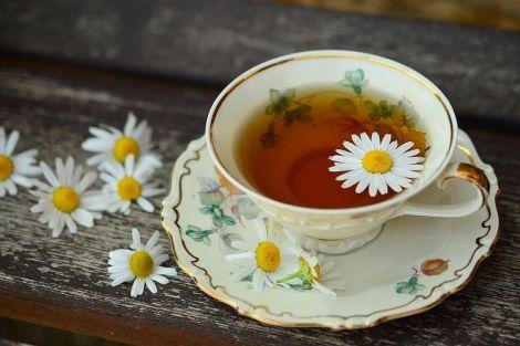 Три рецепти приготування чаю з трав і ягід для підтримки здорового імунітету