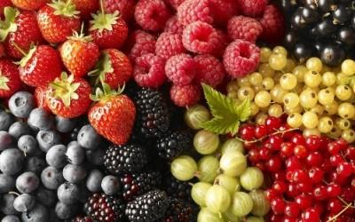 Норма фруктів