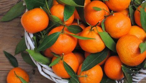 Користь мандаринів для схуднення