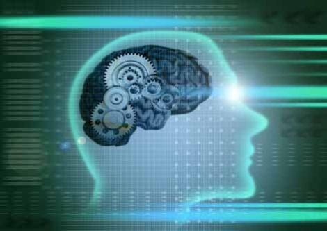 Що впливає на IQ