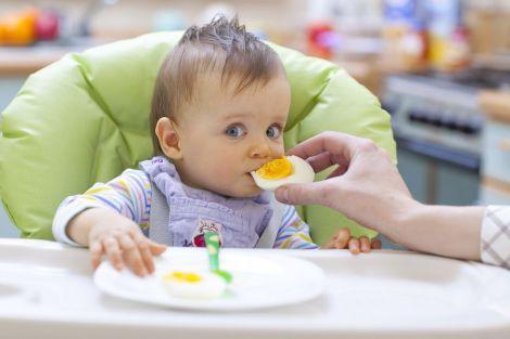 Вживання яєчних жовтків