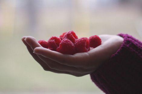 Вчені виявили омолоджуючий ефект малини