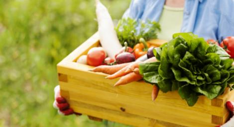 Вегетаріанство у похилому віці