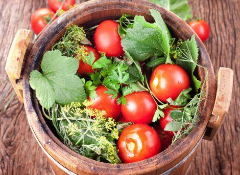 Корисні солоні помідори