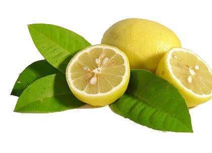 Корисне насіння лимона