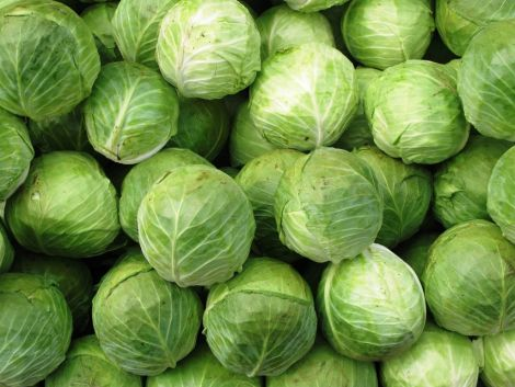 3 хвороби, які вилікує капуста