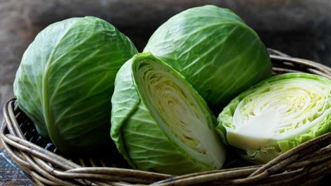 Протипухлинні властивості капусти