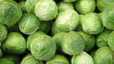 Користь капусти для нирок