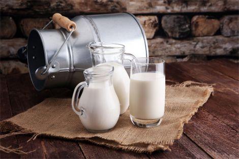 Користь молока для людини