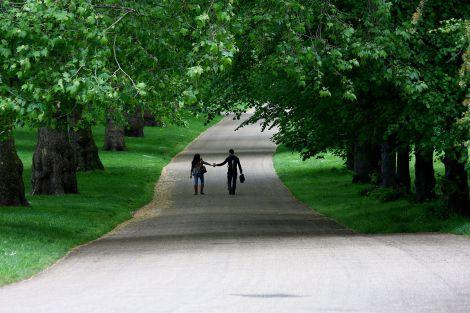 Жінкам потрібно жити в районах із зеленими насадженнями