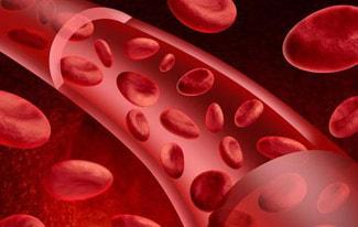 Незвичайні продукти, що підвищують гемоглобін у крові