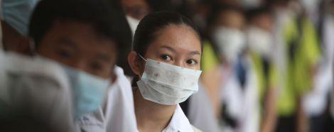 Чи можна заразитись коронавірусом від кота?