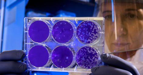 Ризики захворіти на коронавірус