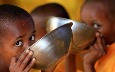 Шкода недоїдання