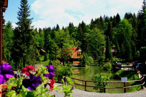 Живописный отдых в Карпатских горах