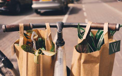 5 простих еко-звичок, які допоможуть зробити світ трішки краще
