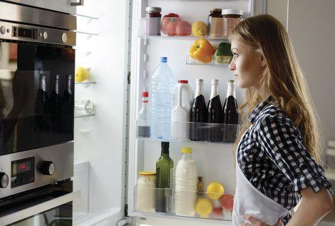 Бактерії холодильника